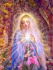 Rose of Light